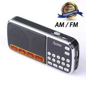 best portable radios 9