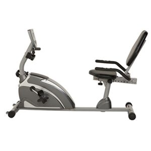 best recumbent exercise bikes for obese